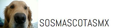 SOS Mascotas MX